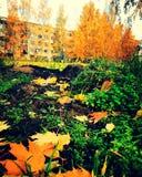 Осень Риги Стоковые Изображения