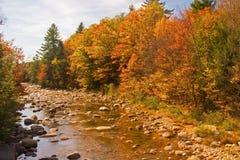 осень смотря место реки вверх Стоковое Изображение