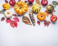 Осень составляя с тыквой, мозолью, яблоками и листьями на светлой предпосылке, взгляд сверху Граница падения Стоковая Фотография RF