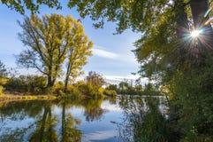 осень спелая стоковое изображение