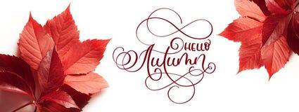 Осень текста литерности каллиграфии здравствуйте! Листья красного цвета на белой предпосылке Стоковая Фотография RF