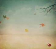 осень теплая Стоковые Фотографии RF
