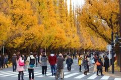 Осень токио Стоковые Изображения