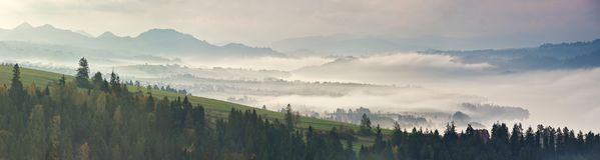 осень туманная Туманная панорама утра Стоковые Изображения RF