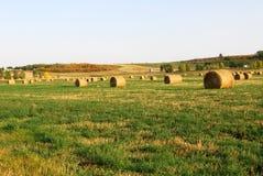 осень тюкует сено поля Стоковое Изображение RF
