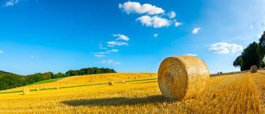 осень тюкует сено Россию поля стоковое фото rf