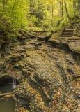 Осень ущелья пахты Стоковое Фото