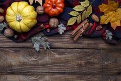 Осень хеллоуин или backgrouund благодарения стоковое изображение rf