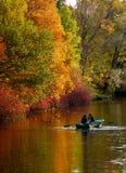 осень цветастая Стоковые Изображения