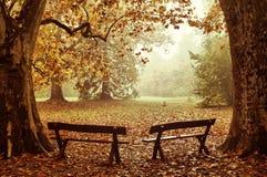 осень цветастая Стоковые Фотографии RF