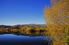 осень цветастая Стоковые Фото