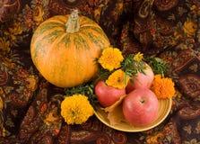осень цветет тыква жизни все еще Стоковая Фотография