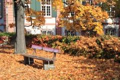 осень Швейцария Стоковая Фотография RF