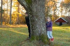осень Швеция Стоковые Изображения RF