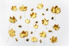 осень яблока миражирует листья состава сухие sacking ваза Картина сделанная из листьев осени золотых на светлой предпосылке Плоск стоковые фотографии rf