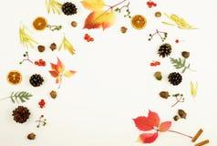осень яблока миражирует листья состава сухие sacking ваза Рамка сделанная из листьев дерева клена осени Стоковая Фотография