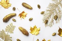 осень яблока миражирует листья состава сухие sacking ваза Рамка сделанная из листьев осени золотых на свете - серой предпосылке П стоковые фотографии rf