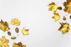 осень яблока миражирует листья состава сухие sacking ваза Рамка сделанная из листьев осени золотых на свете - серой предпосылке П стоковые изображения rf