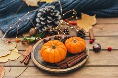осень яблока миражирует листья состава сухие sacking ваза Тыква и циннамон Стоковые Фото