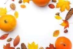 осень яблока миражирует листья состава сухие sacking ваза Тыквы, высушенные листья на белой предпосылке удерживания halloween дат стоковое изображение