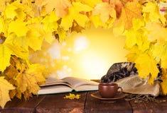 осень яблока миражирует листья состава сухие sacking ваза  стоковая фотография rf