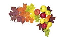осень яблока миражирует листья состава сухие sacking ваза Стоковые Изображения