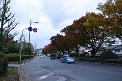Осень Япония желтая цвета красная и зеленый Стоковое фото RF
