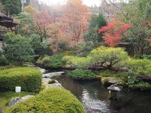 осень япония Стоковые Фото