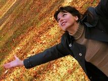 осень 2 Стоковая Фотография RF