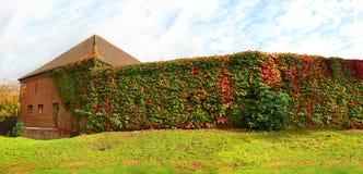 Осень Стоковая Фотография RF