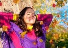 осень 5 цветастая Стоковые Изображения RF