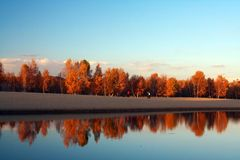 осень Стоковые Изображения
