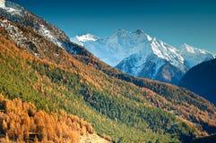 осень alps Стоковое Фото