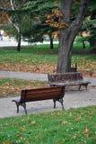 осень benches пейзаж парка Стоковые Фотографии RF