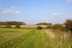 Осень bridleway Стоковые Изображения