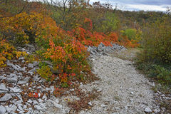 Осень Carso около Aurisina Стоковое Фото