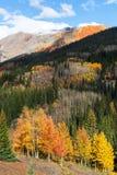 осень colorado стоковое изображение rf