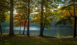 Осень Lakeview Стоковые Изображения