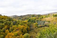 Осень montain взгляда Стоковое Изображение RF
