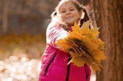 осень outdoors Стоковое Изображение