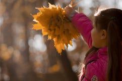 осень outdoors Стоковые Изображения RF