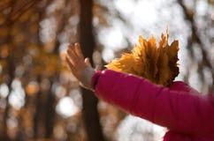 осень outdoors Стоковая Фотография RF