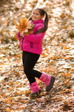 осень outdoors Стоковые Фотографии RF