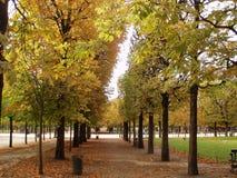 осень paris Стоковая Фотография RF