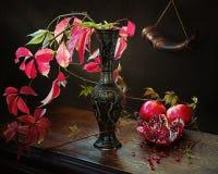 Осень Pomgranate Стоковая Фотография