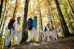 осень trekking Стоковое Изображение RF