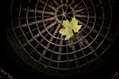 Осень Urbam стоковое фото rf