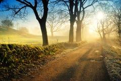 осень wycollar Стоковое Изображение