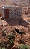Осел около дома чабана Стоковое Изображение