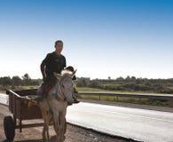 Осел & тележка в Марокко Стоковые Изображения RF